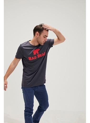 Bad Bear Tişört Renkli